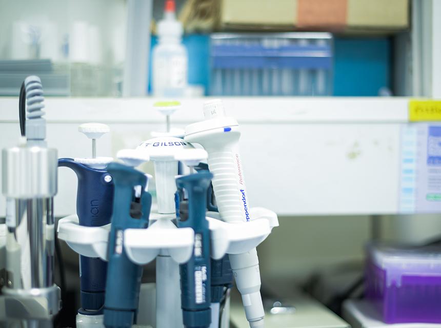 タンパク質の網羅的解析による医療への貢献